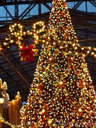 電飾ミッキーとクリスマスツリー