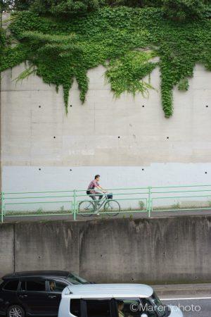 擁壁とつると自転車