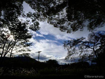 林の間から望む空と雲
