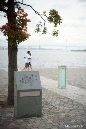 海辺の公園の歌碑