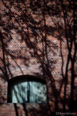赤レンガ風の壁と木立のシルエット