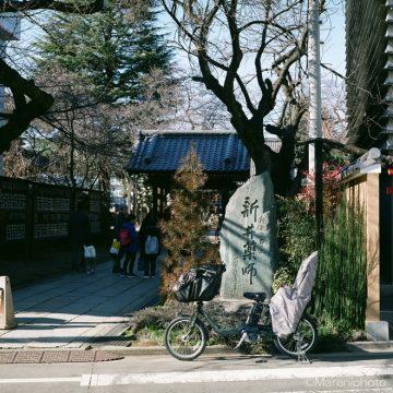 新井薬師門前