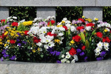 献花台の花