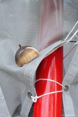 赤い柱に玉殻