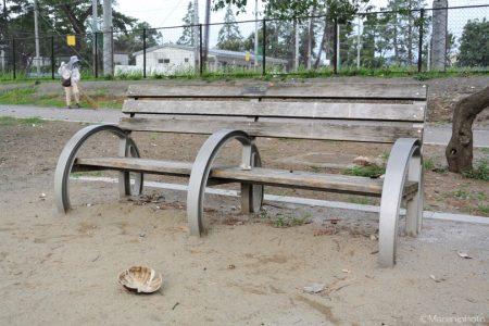 ベンチと玉殻