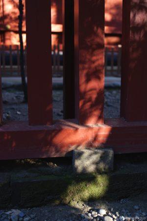 社殿を囲う柱の日射し