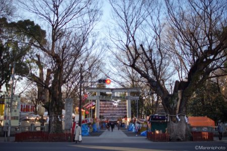 大国魂神社の参道