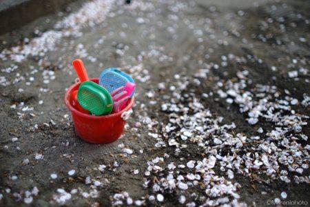 花びらの砂場とおもちゃ