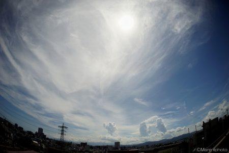 入道雲の湧く空