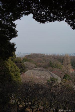 高台から松連庵を望む