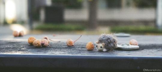 ネズミの人形とギンナン
