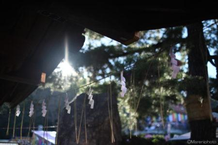 手水舎の注連飾りと差し込む光