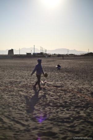 砂浜を犬と散歩する人