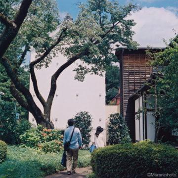 白壁の土蔵の裏を散策する人