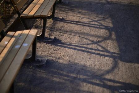 ベンチの影